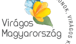 viragos-magyarorszag-verseny-2020